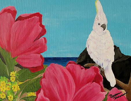 Pink Flowers White Bird by Barbara Petersen