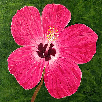 Pink Hibiscus by Maggie Ullmann