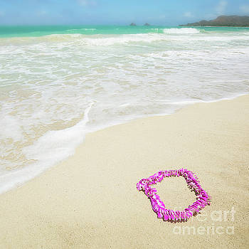 Pink Lei - Kailua Beach by Charmian Vistaunet