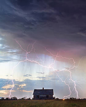 Pink Lightning On the Prairie Portrait by James BO  Insogna