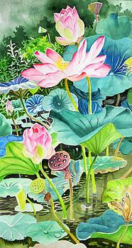 Pink Lotus  by Vishwajyoti Mohrhoff