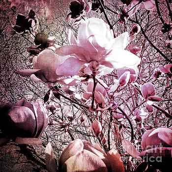 Pink Magnolias by Karen Lewis