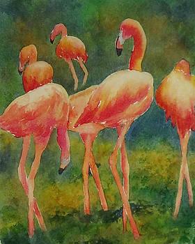 Pink Parade by Darla Brock