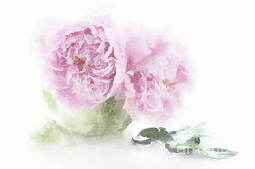 Pink Peonies in a Teapot by Ann Garrett