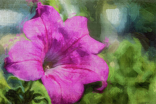 Pink Petunia by Cathy Kovarik