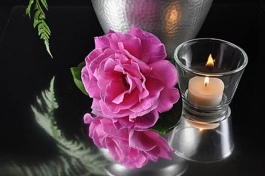 Pink Reflection by Jim Walls PhotoArtist