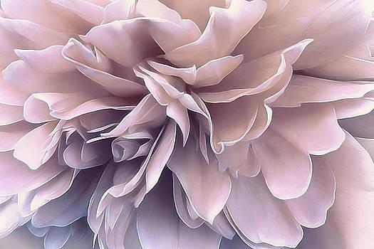 Pink Sea Salt by Darlene Kwiatkowski