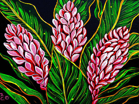 Pink Shell Ginger by Debbie Chamberlin