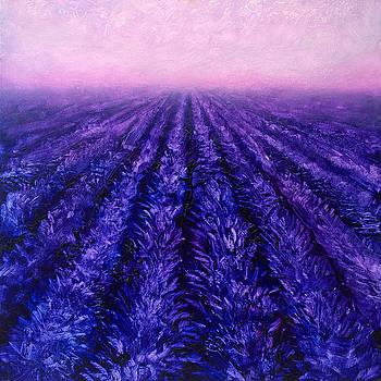 Pink Skies - Lavender Fields by Karen Whitworth