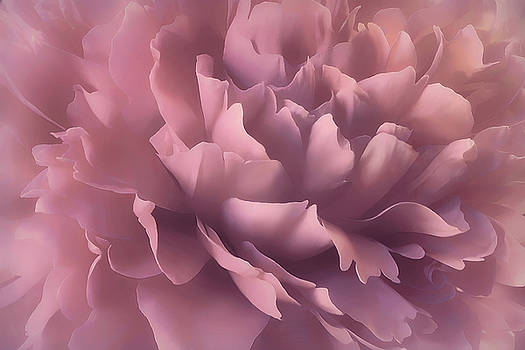 Pink Splash by Darlene Kwiatkowski