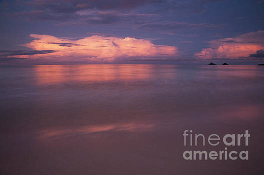 Pink Sunset at Kalama Beach by Charmian Vistaunet