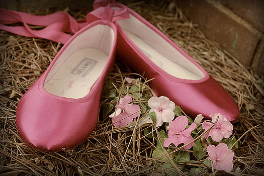 Pinke ballet shoes and flowers by Terry and Brittany Sprinkle