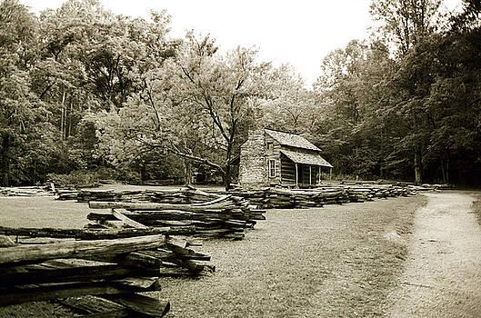 Scott Pellegrin - Pioneers Cabin