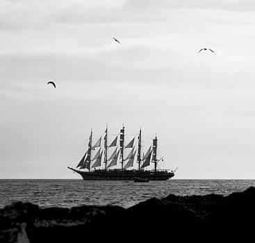 Pirates by Vail Joy
