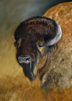 Plains Buffalo by Joe Prater