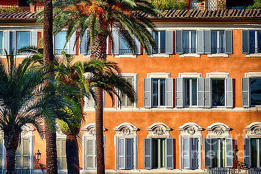 Palm Trees and Windows by George Oze