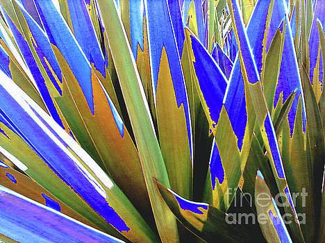 Plant Burst - Blue by Rebecca Harman