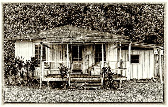 Plantation Cottage #2 by Carolyn Marchetti