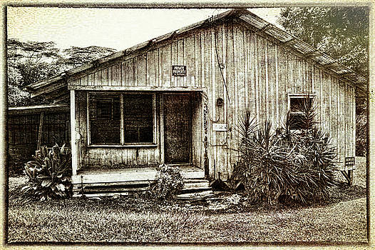 Plantation Cottage #4 by Carolyn Marchetti