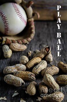 Play Ball by Deborah Klubertanz