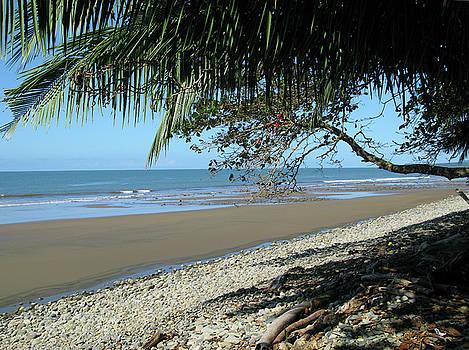 Playa Ballena Costa Rica by Joe Schofield