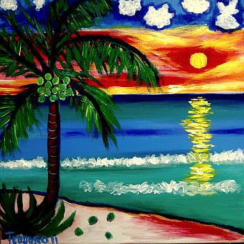 Playa Norte Sunset by Ted Hebbler