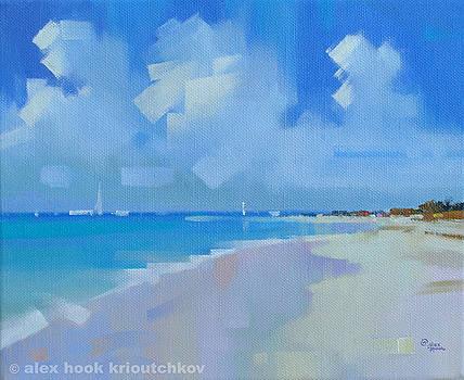 Playa VIII by Alex Hook Krioutchkov
