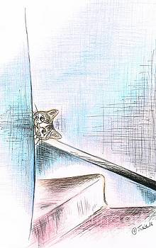 Playful Cat by Teresa White