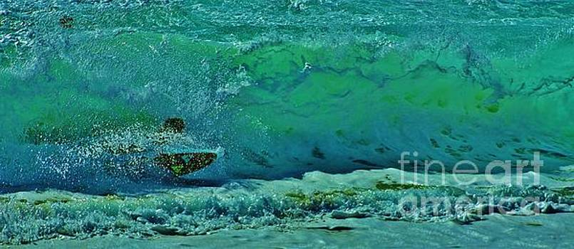Playing In The Shore Break by Craig Wood