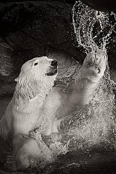 Playtime by Jessica Brawley