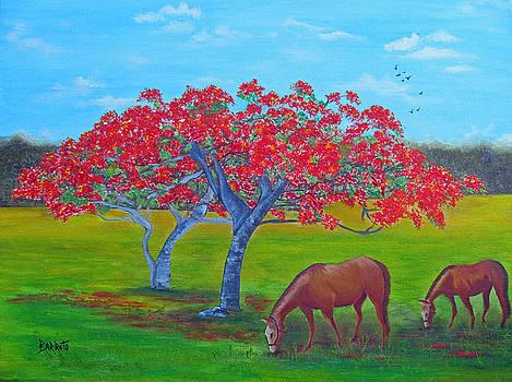 Pleasent Pastures by Gloria E Barreto-Rodriguez