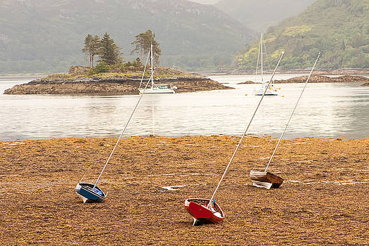 Plockton Sailboats by Kathleen McGinley