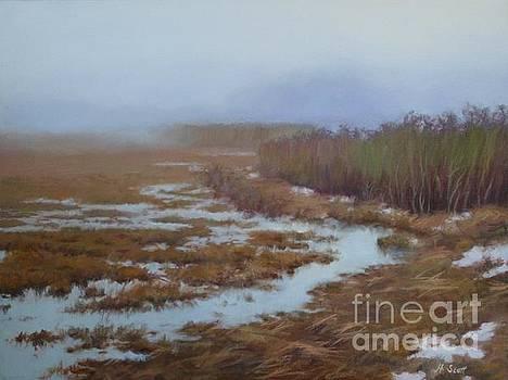 Plum Island Mist by Hillary Scott