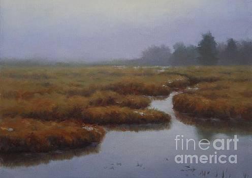 Plum Island Mist II by Hillary Scott