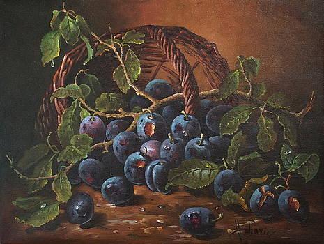 Plums by Dusan Vukovic