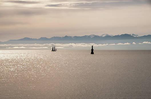 Marilyn Wilson - Ocean Sailing