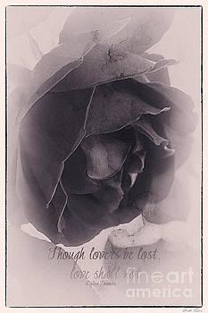 Poetic by Linda Lees