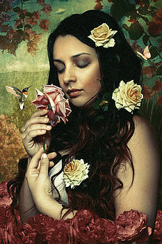 Poetry Of Roses by Murgia Cinzia