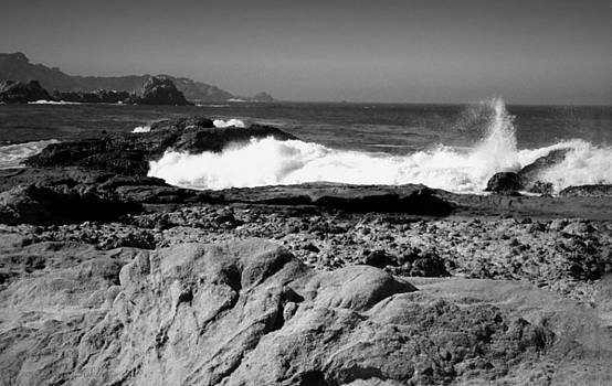 Joyce Dickens - Point Lobos Shore B And W