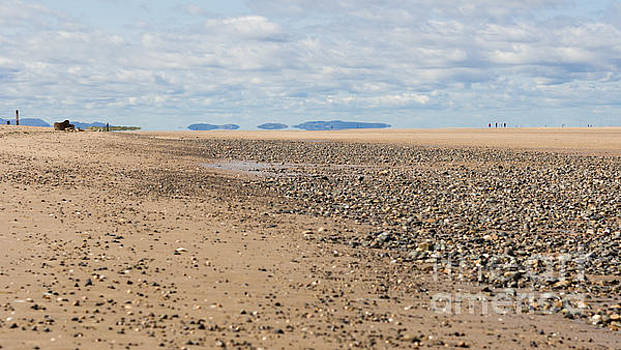 Point of Ayr by Kathryn Bell