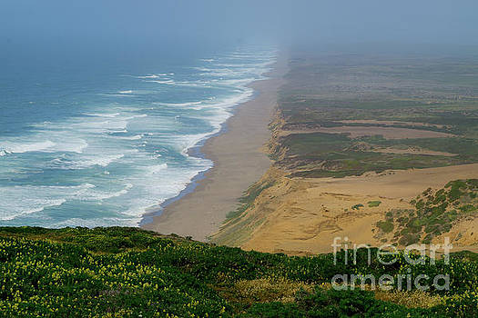 Point Reyes Coast by Terry Lynn Johnson