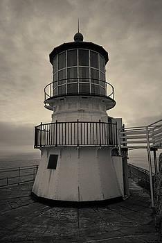 David Gordon - Point Reyes Lighthouse I Toned