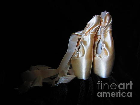 Pointe Shoes2 by Laurianna Taylor