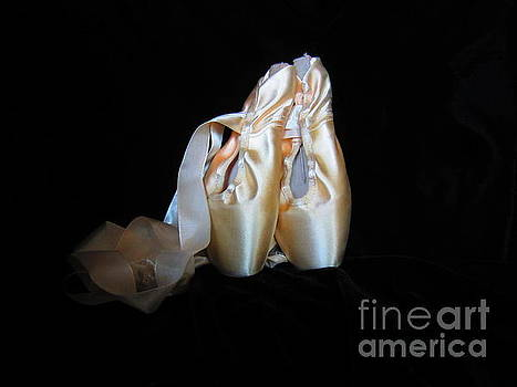Pointe Shoes3 by Laurianna Taylor