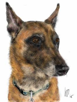 Pointy Ear Pooch by Lois Ivancin Tavaf