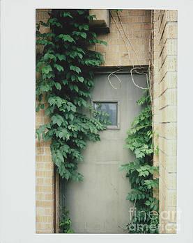 Polaroid Image-Ivy In The Doorway by Greg Kopriva