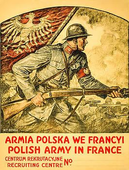 Polish Arny in France by David Letts