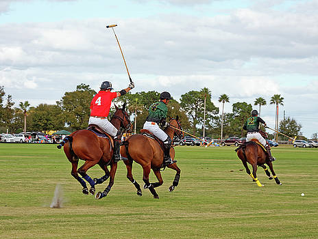 Polo Action by Sally Weigand