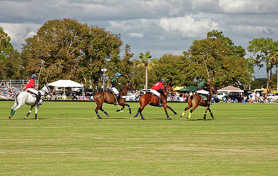 Polo Match by Sally Weigand