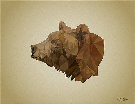Poly Bear by Tim Ford